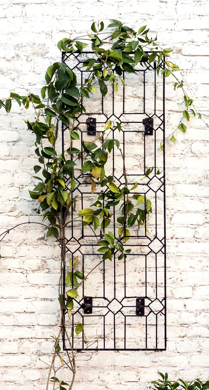 H Potter Diamond Wall Trellis With Wall Mounting Brackets