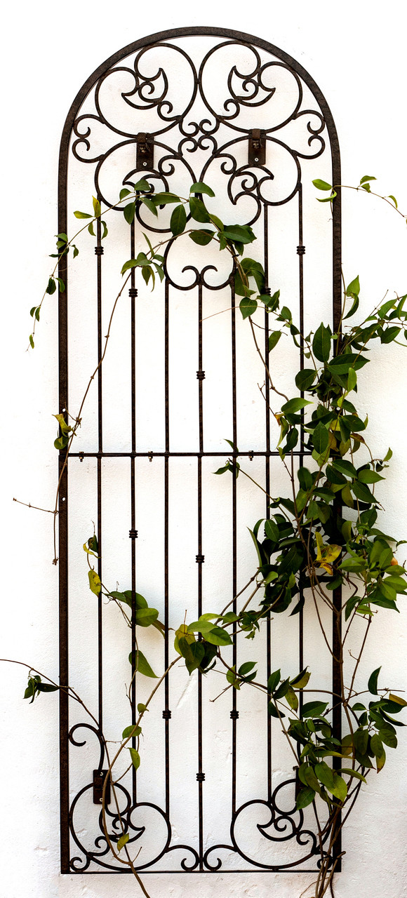 Charmant Trellis, Trellises, Metal Trellis, Garden Trellis, Outdoor Decor, Garden  Screen,