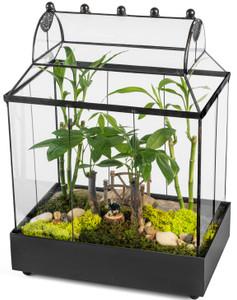 large terrariums wardian case