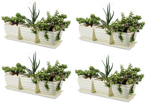 H Potter Planter Pots with Trays 4 Sets of 3 Square Succulent Flower Herb