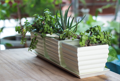 H Potter Planter Pots With Tray Set Of 3 Outdoor Indoor