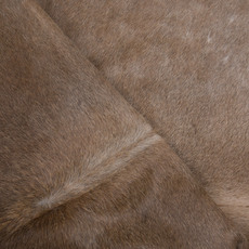 Cowhide Rug APR039-21 (240cm x 200cm)