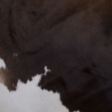 Cowhide Rug APR089-21 (230cm x 190cm)