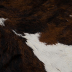Cowhide Rug APR128-21 (220cm x 210cm)