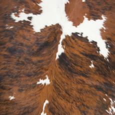 Cowhide Rug MAY101-21 (220cm x 210cm)