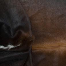 Cowhide Rug AUG214-21 (200cm x 170cm)