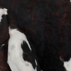 Cowhide Rug SEP009-21 (220cm x 210cm)