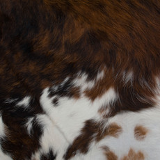 Cowhide Rug SEP026-21 (200cm x 190cm)