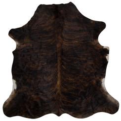dark brown brindle
