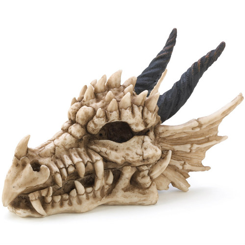 Dragon Skull Trinket Box