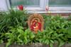 Holy Family Outdoor Garden Shrine - Gold