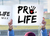 Pro Life with Handprint Waterproof Signs (Pack of 12)