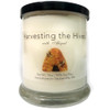 """""""Harvesting the Hives with Abigail""""  Soy Candle"""