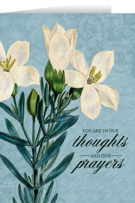 You Are in Our Thoughts Greeting Card