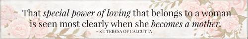 """Special Power"" St. Teresa of Calcutta Quote Plaque"
