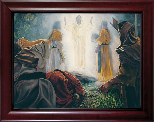 Transfiguration by Jason Jenicke - Cherry Framed Art