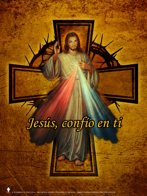 Spanish Divine Mercy Cross Poster