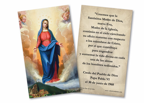 Spanish Our Lady of Graces Received Holy Card