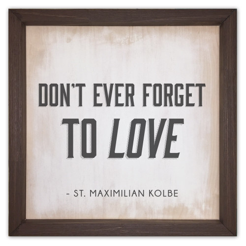 """""""Don't Ever Forget to Love"""" Rustic Framed Quote"""