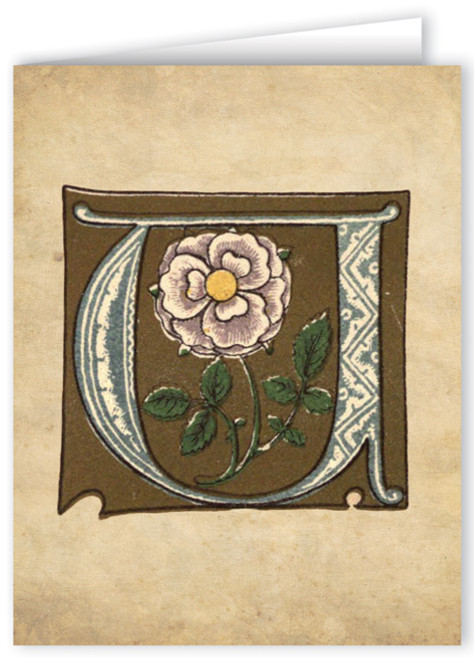 Letter U Illuminated Manuscript Note Card