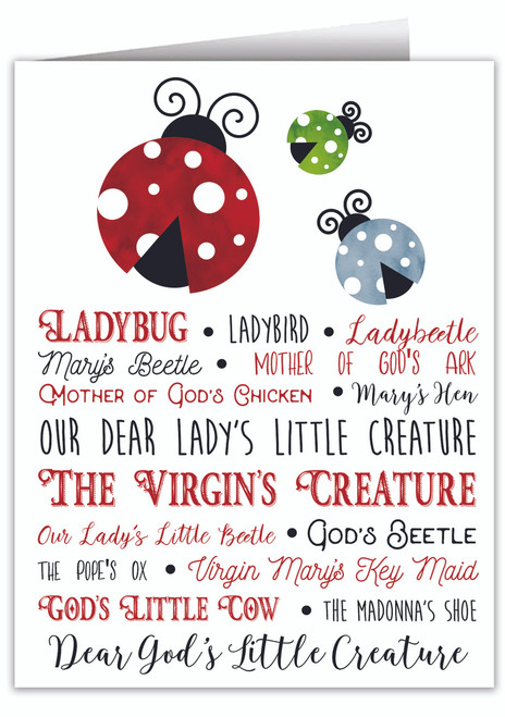 Ladybug Note Card