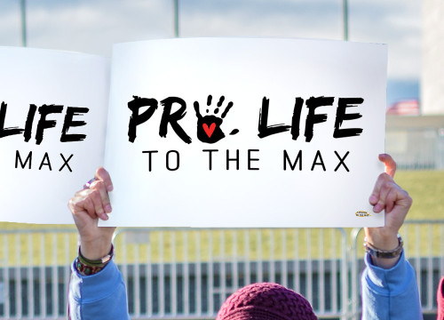 Pro Life to the Max Waterproof Signs (Pack of 12)