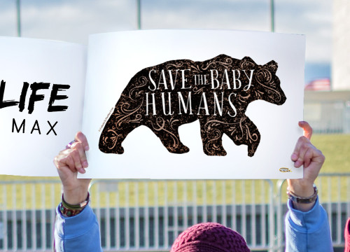 Save the Baby Humans Bear Waterproof Signs (Pack of 12)