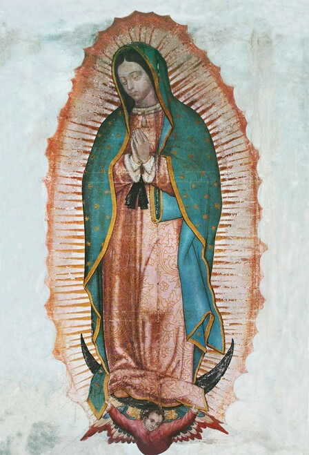 Our Lady of Guadalupe Indoor Outdoor Aluminum Print