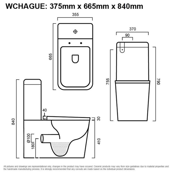 Hague - Back To Wall Toilet Suite