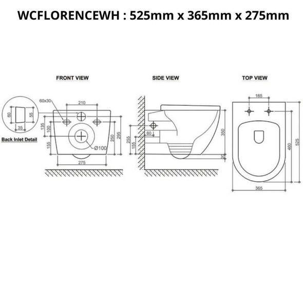 Florence - Rimless Wall Hung Nano Glaze Toilet