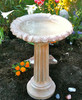 "Sculpted two piece birdbath, Fancy Column Cast Stone Bird Bath Athena Garden, Two piece sturdy cast stone birdbath, concrete bird bath, water feature, romanesque style water feature, classical bird bath, IMG_1561.jpg"" alt=""<Fancy Column Cast Stone Bird Bath Athena Garden, Two piece sturdy cast stone birdbath, concrete bird bath, water feature, romanesque style water feature, classical bird bath"