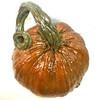"Fall Decor concrete pumpkins, DIY concrete pumpkins, ""JackO'lantern Hand Sculpted Fall Decor Stone Pumpkins, Stone Jackolantern, Concrete pumpkin, outdoor pumpkin decoration, halloween decor, thanksgiving decoration, cast stone terracotta pumpkin, athena garden, Cinderella Pumpkins"