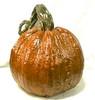 """JackO'lantern Hand Sculpted Fall Decor Stone Pumpkins, Stone Jackolantern, Concrete pumpkin, outdoor pumpkin decoration, halloween decor, thanksgiving decoration, cast stone terracotta pumpkin, athena garden IMG_1373.jpg"" alt=""Cinderella Pumpkins, Concrete Pumpkin, Fall Decor pumpkins, DYI concrete pumpkins"