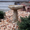 concrete bird bath, rose bird bath, stone bird bath, garden bird bath, outdoor water feature, cast stone bird bath, bird feeder