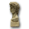 Classic Roman Style Bust of David - Side view