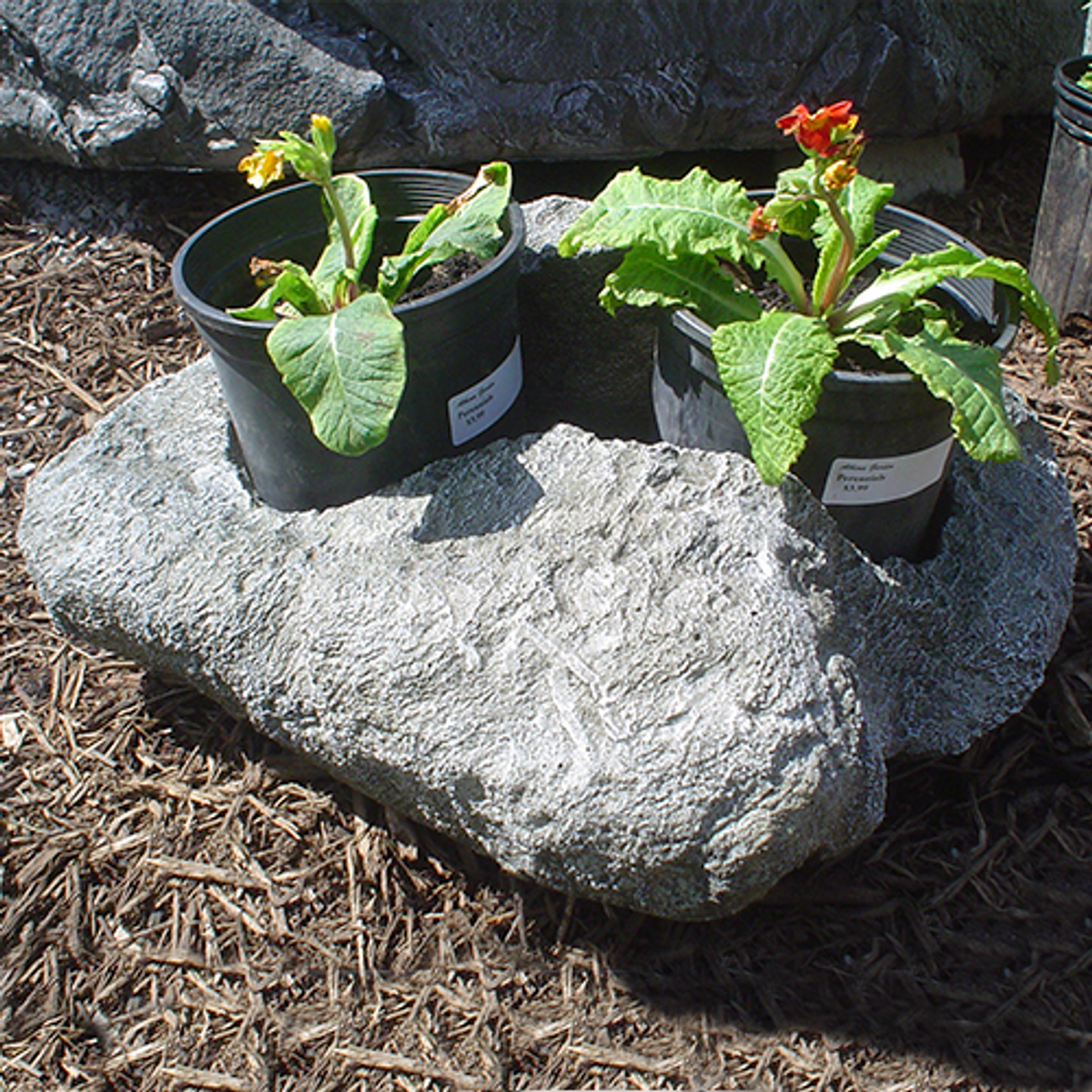 Large Rock Planter