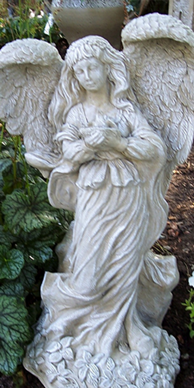 Abbey Angel