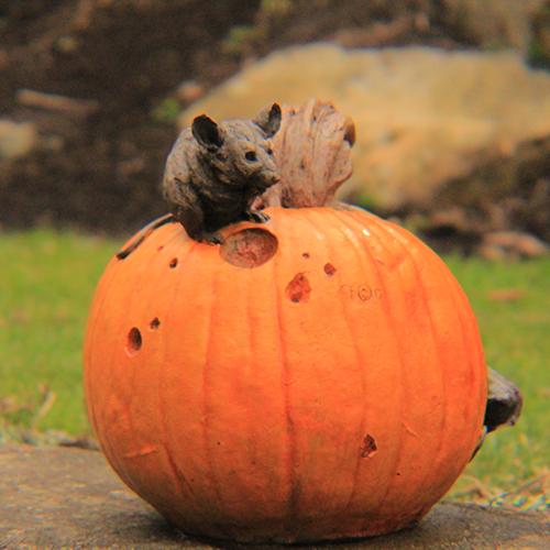 Fall Decor Pumpkin, halloween Pumpkin, Concrete Pumpkin, Outdoor Halloween decoration.
