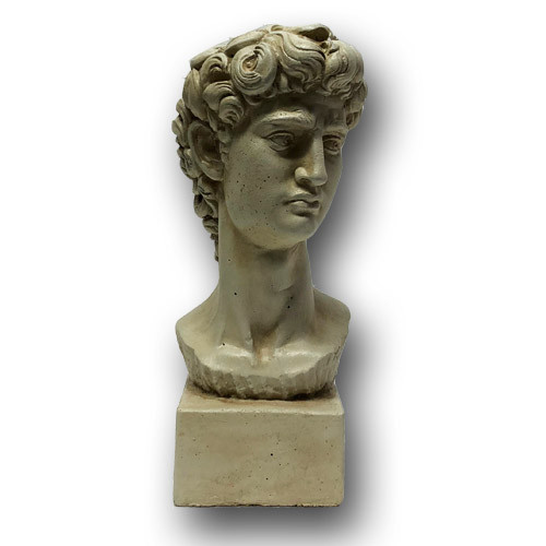 BR-139 Classic Roman Style Bust of David