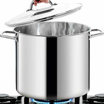 Tramontina Tramontina ProLine 15.1 Litre Stainless Steel Stock Pot with Lid