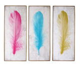 3 assorted feather wall art