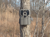 Exodus Trek Trail Camera