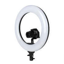 "Promaster Specialist LEDR600B 18"" LED Ringlight"
