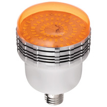Westcott Basics 45W LED 2-Light Umbrella Kit with 2.4 GHz Remote