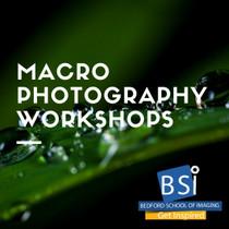 205. Macro Photography Workshops - Rogers