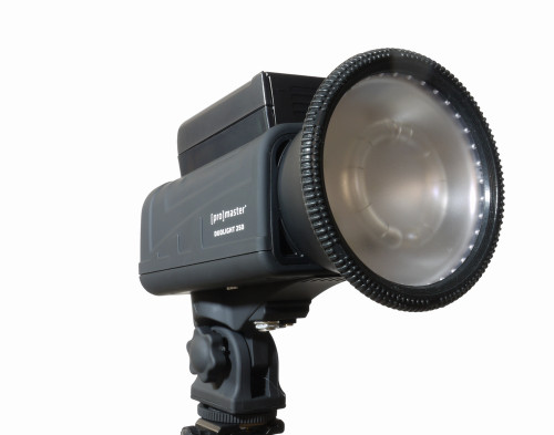 Promaster Duolight 250 Hybrid Flash
