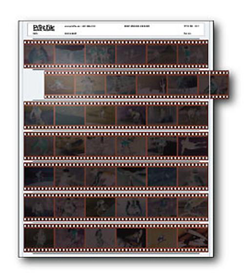 Print File 35-7 35mm Negative Preservers (100 Pack)