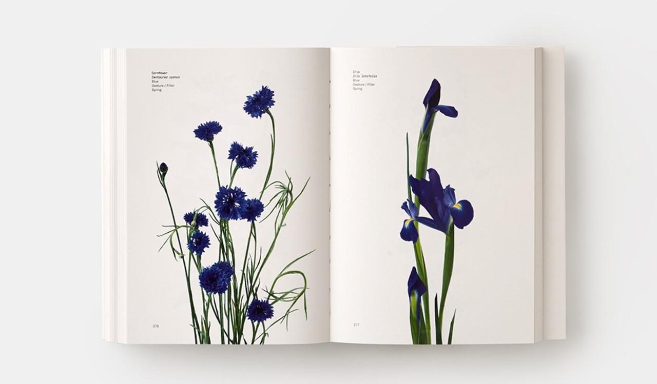 Flower Color Guide Detroit Institute Of Arts Museum Shop