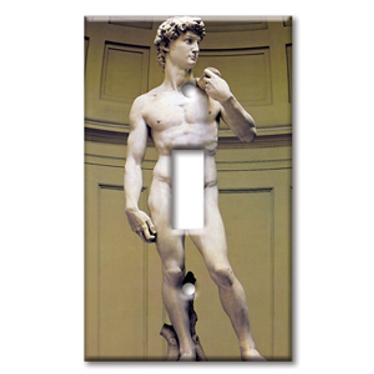 Switch Plate Single Michelangelo's David