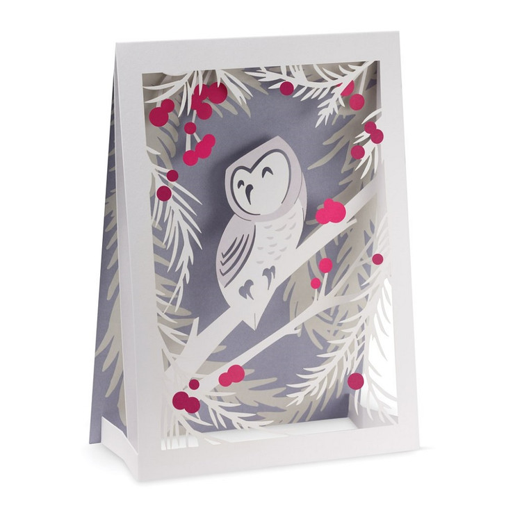 Wintery Owl Boxed Holiday Cards